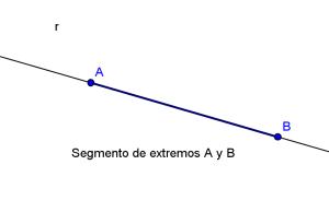 geo059 - segmento